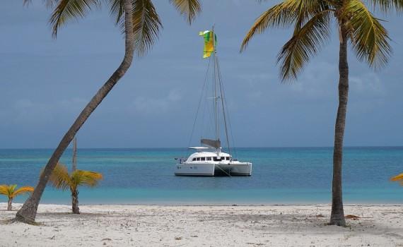 Barbuda – Kite & Family